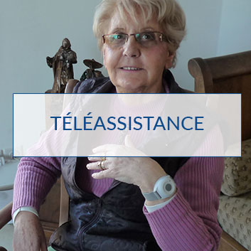 teleassistance-estimation
