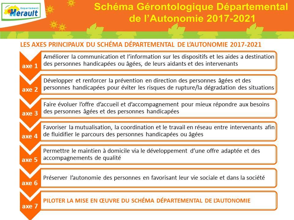 schéma gerontologique